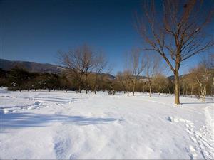 冬雪—有的地方雪厚点
