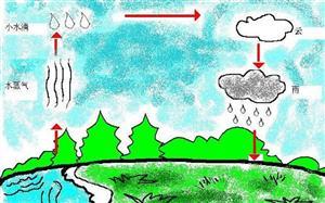 雨的形成图