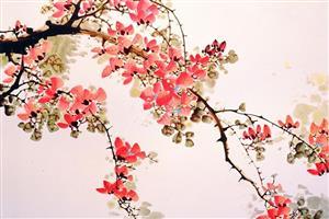 春去花还在