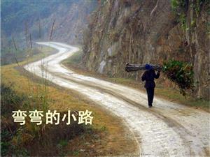弯弯的小路