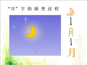 """""""月""""字的演变过程"""