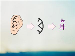 看图识字   耳