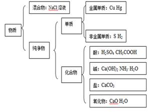 物质分类与举例