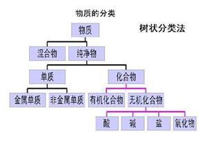 树状分类法