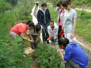 开学新鲜事-生物学习兴趣小组