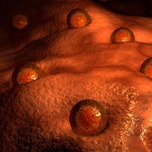合成生物膜能像活细胞一样生长