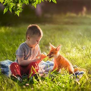 推荐阅读:人与动物应和谐相处