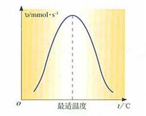 酶活性受温度影响示意图