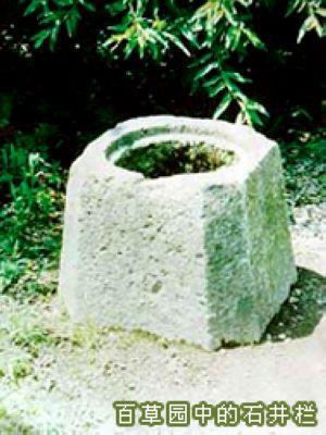 百草园中的石井栏