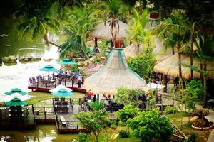 热带丛林3