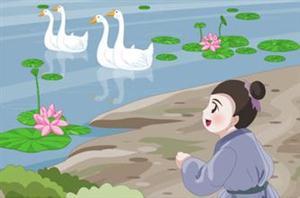 鹅在水中游