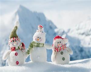自然 雪人小伙伴