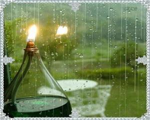 自然 雨点滴答