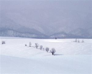 自然 雪海茫茫