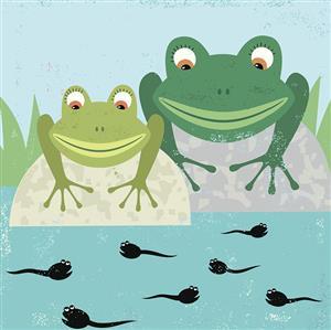 精彩故事:两只青蛙