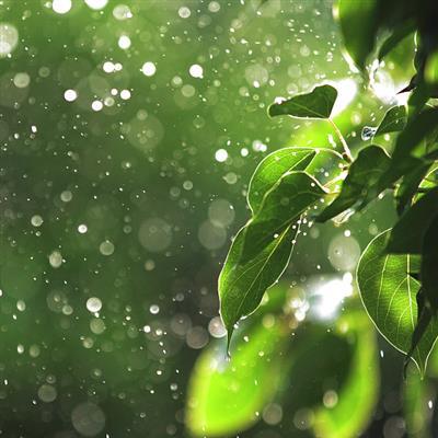 推荐阅读:雨天的歌