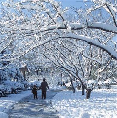 [精]《济南的冬天》课件1