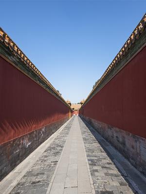 【精1】《第1课 中国早期人类的代表——北京人》(教案)
