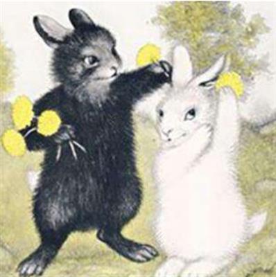 精彩故事:会飞的小白兔和小黑兔