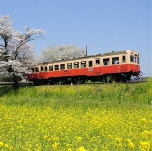 推荐阅读:火车的故事