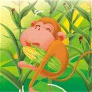 精彩故事:猴子掰玉米