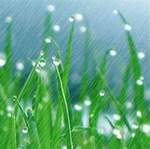 《雨点儿》课文朗读1